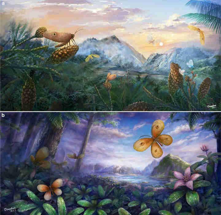化石揭示了对中生代授粉昆虫的新洞察力