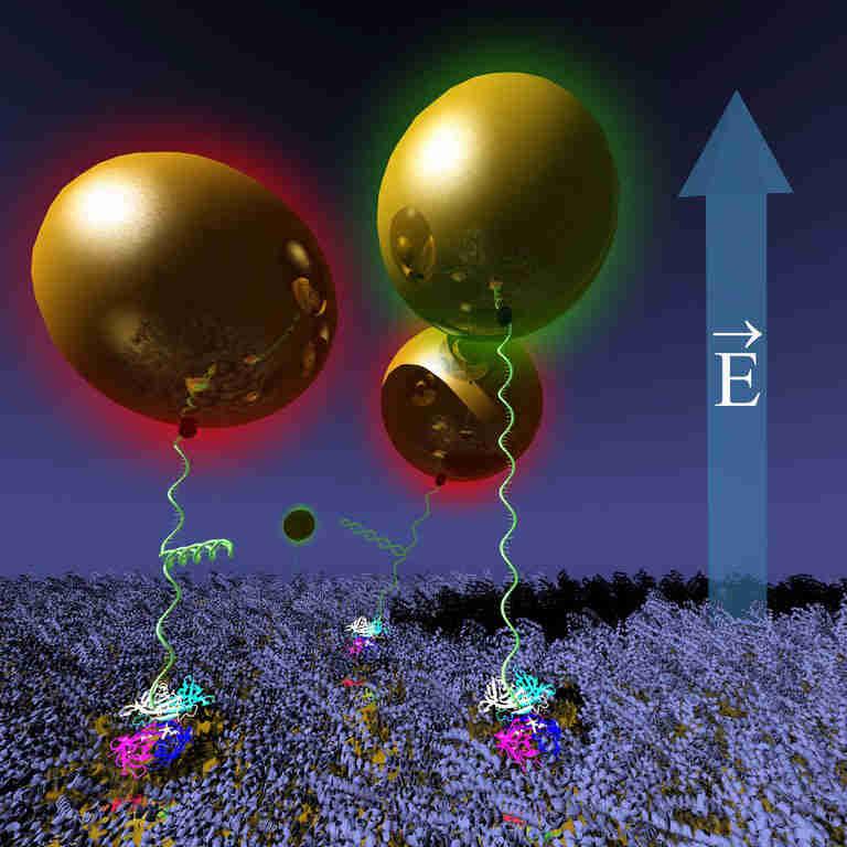 研究人员开发了一种新颖的纳米术器系统