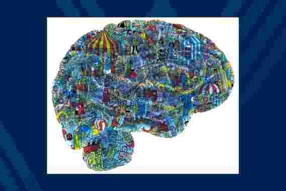 创新的大脑研究记录神经元以了解认知