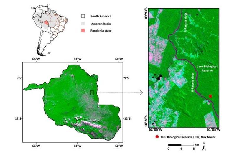 深入了解2019年亚马逊雨林卫星研究的火灾