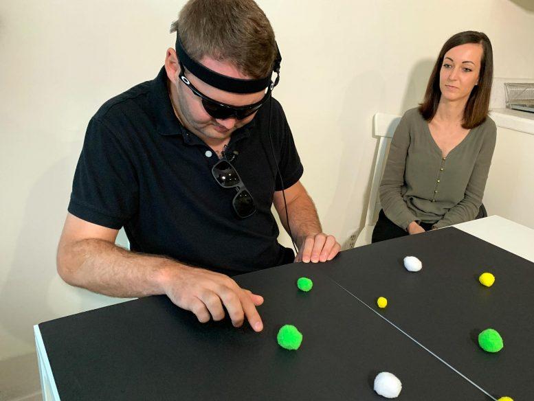 实验脑植入物恢复对盲人的视觉感知[视频]